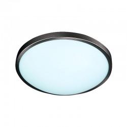 SP/4531012 Spot Light